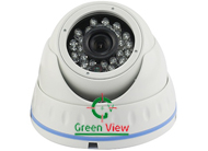 GLIRDNS100- Vandalproof Dome IP Camera